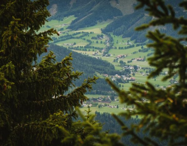Five favourites from Schladming