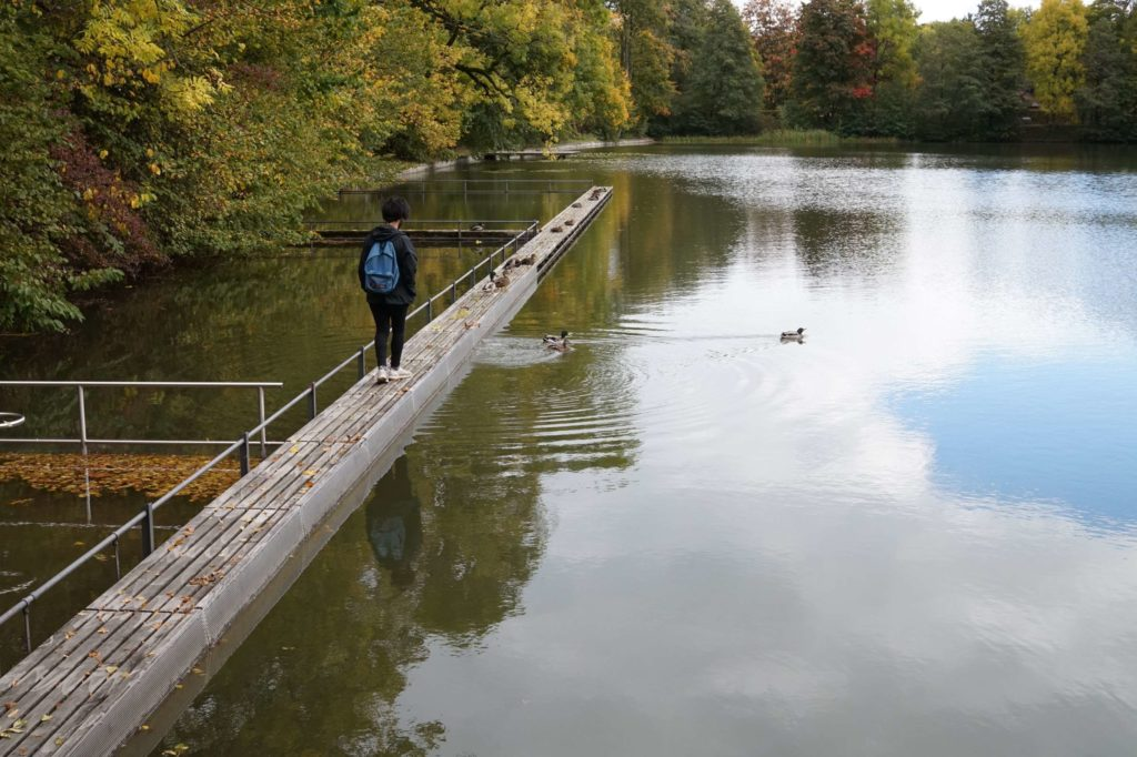 Aydin walking out on a narrow boardwalk at Drei Weieren towards some ducks