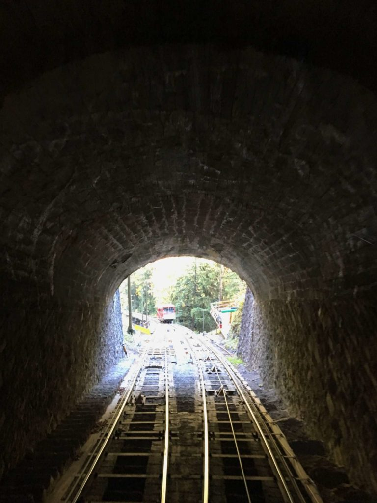 View from the Niesenbahn halfway station, from inside a tunnel