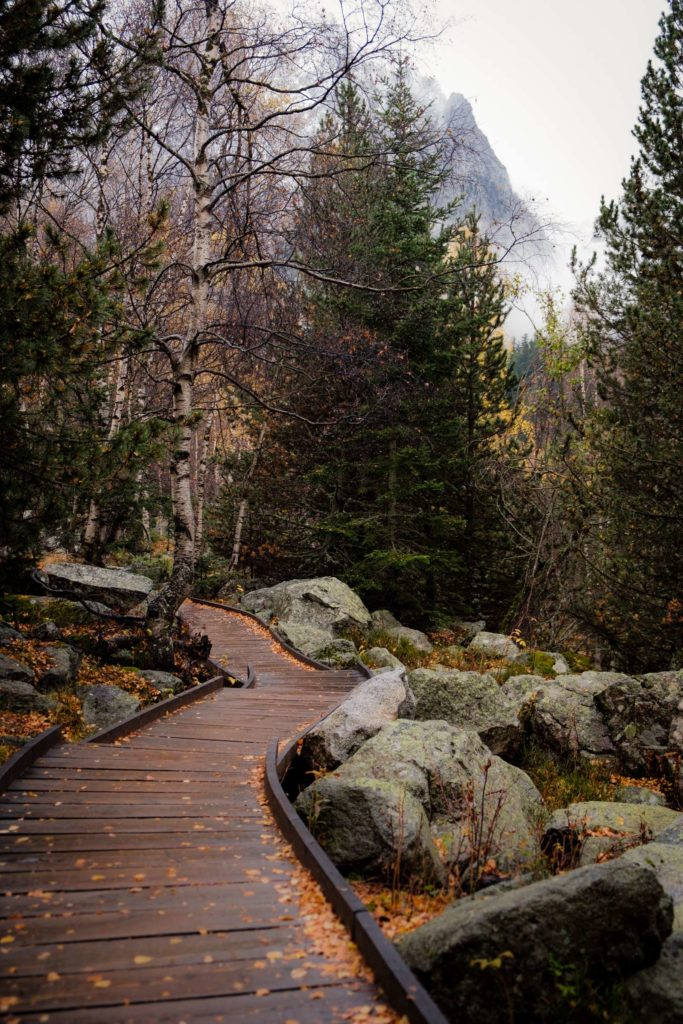 Board walk through forest in Aigüestortes i Estany of Saint Maurici national park