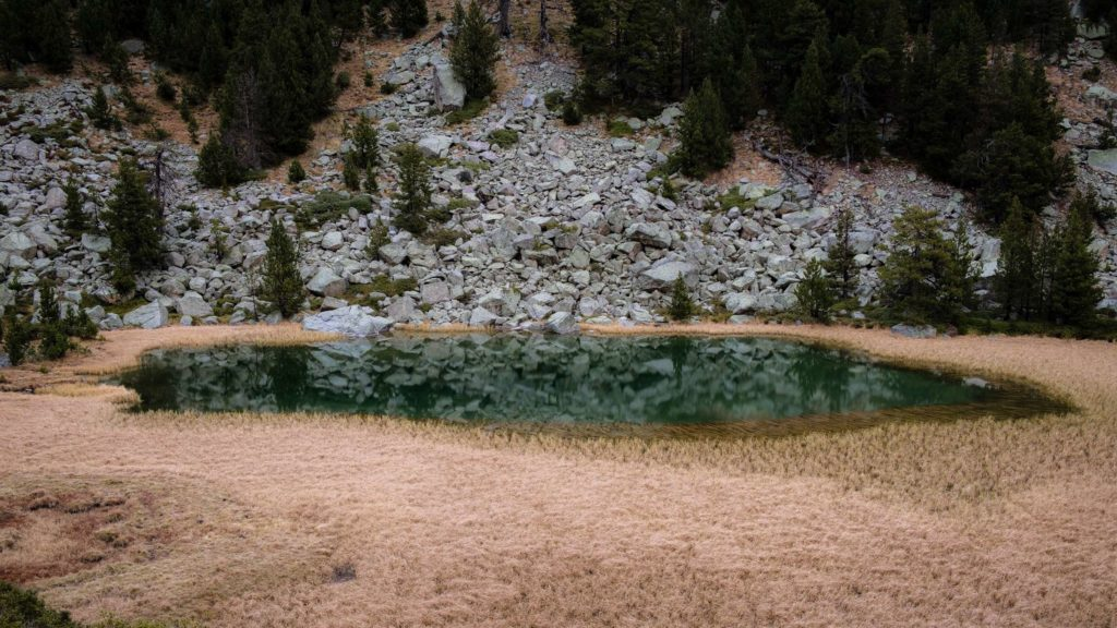 Small lake in Aigüestortes i Estany of Saint Maurici national park surrounded by boulders and orange grass