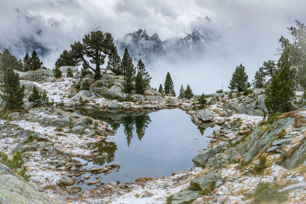 A closeup shot of a small alpine lake in Aigüestortes i Estany of Saint Maurici national park lake reflecting trees, cloudy mountains in background
