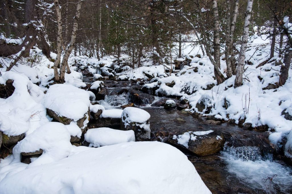 River through snowy woods near Espot