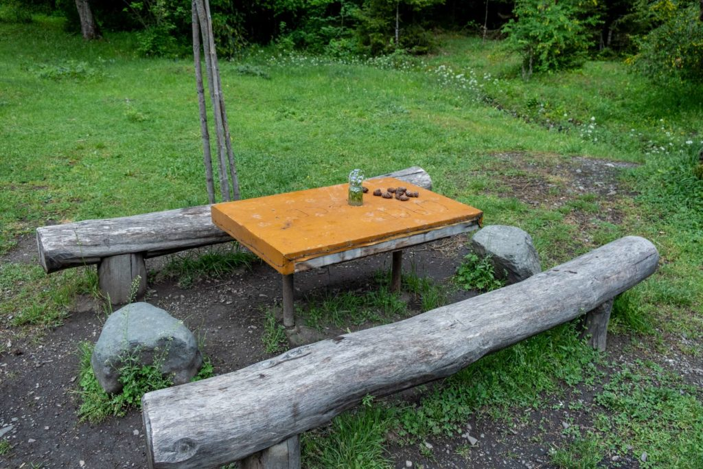 A cute picnic area with a table and benches on the footprint trail in Borjomi National Park