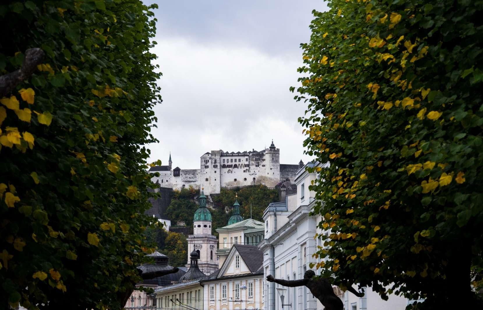 Salzburg castle framed by trees