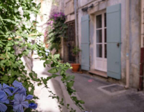 Wild and without an art education: Arles & van Gogh