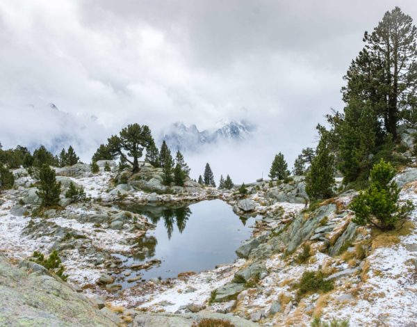 Wild and without: Aigüestortes i Estany of Saint Maurici National Park