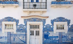 Wild and without hitchhiking: Aveiro